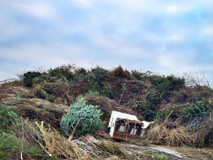 Mittendrin in Kampen: ein altersstrapazierter Strandkorb. Eigentlich streng verboten, aber gut, hier drücken wir mal ein Auge zu. Und weiteres Reisig und viel Baumschnitt drauf. Dann siehts keiner mehr.